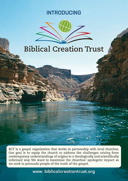 picture of cover of leaflet introducing BCT showing water flowing through the Grand Canyon as an example of the beauty of Creation